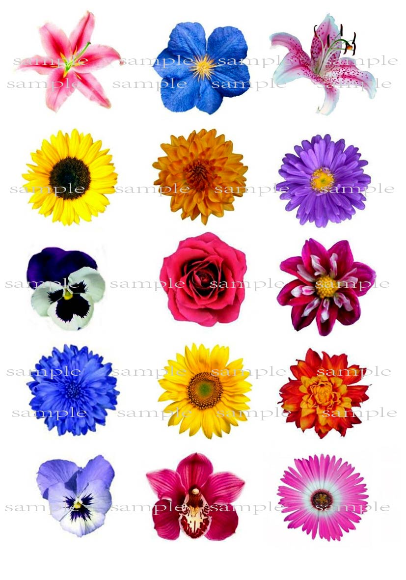 15 Mixed Flower Edible cake topper wafer rice paper for cake ...