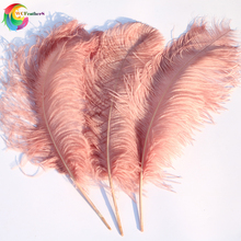 10PCS גדול מוט באופן מלא טבעי עור ורוד יען נוצות 24 26 אינץ חתונה מסיבת קרנבל אבזר קישוט נוצות