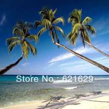 Tropical beach 8'x8′ CP Computer-painted Scenic Photography Background Photo Studio Backdrop ZJZ-388