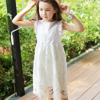 Lace Dresses For Girls Summer Princess Wedding Party Little Girls Dresses Size 3 4 5 6