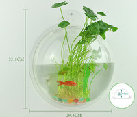 Creative Acrylic Fish Tank Transparent Wall Hanging Aquarium Plastic Fish Box