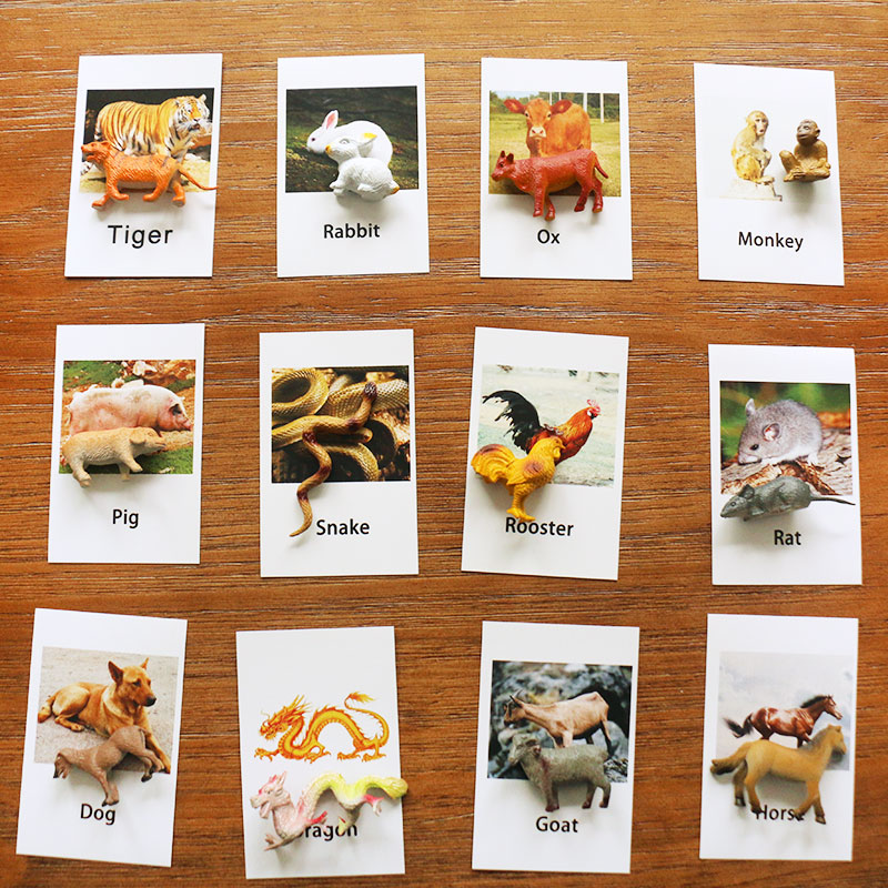 Montessori Language Material Zodiac Cards Preschool Educational Learning Toys For Kids Juguetes Brinquedos MJ1344H