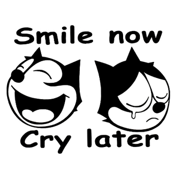 12x15cm Two Face Feli Cartoon Cat Decal Vinyl Car Sticker Comics Smile Cry Character Waterproof New TA097 image
