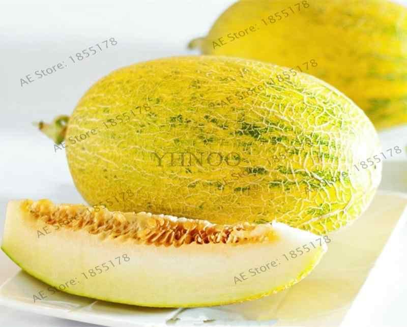 50 Pcs Bonsai Melão cantaloupe Fruit Superior Doce Mel Orvalho Melão Melão fruta Deliciosa Carne Verde Para Jardim