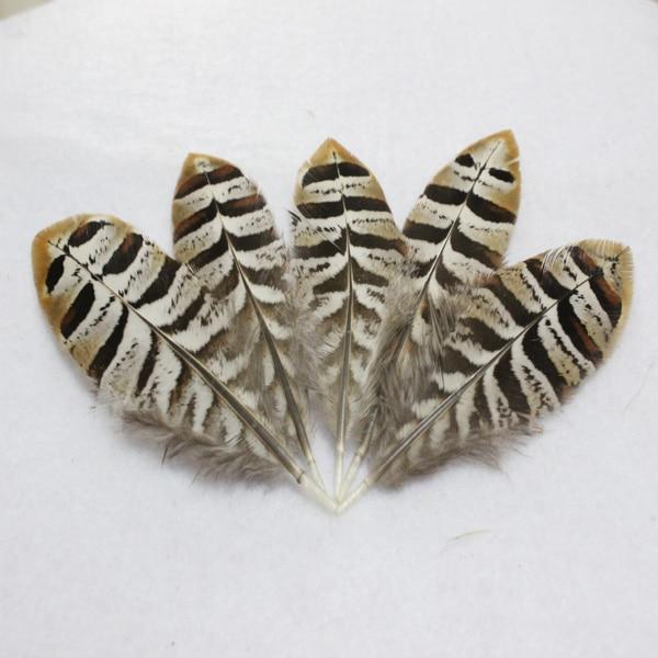 Перо из Китая