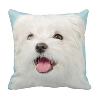 Printed Pillow Cases Maltese Puppy Pillow Case Size 45x45cm Free Shipping