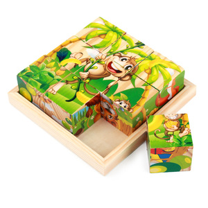 SLPF Wooden 9-piece Six Sides Draw 3d Puzzle Standing Building Toys For Children Early Childhood Educational Hot Sale D08(China)