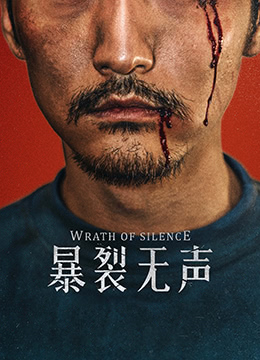 《暴裂无声》2017年中国大陆剧情,犯罪,悬疑电影在线观看