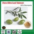 500g Puro Polvo de Extracto de Hoja de Olivo, 40% Oleuropeína Polvo Suplemento Dietético Ehancing Inmunidad