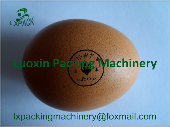 LX-PACK Lowest Factory Price egg inkjet printing conveyor date logo symbels marking on egg printer holder egg marking belt punching holes egg conveyor belt