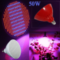 New Hydroponics Lighting AC85-265V 50W E27 Red/Blue SMD3528 500 Leds Hydroponic LED Plant Grow Lights Lamps Led Bulb LED Light