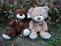Wholesale 40cm plush toy teddy bears two colors with high quality and low price.