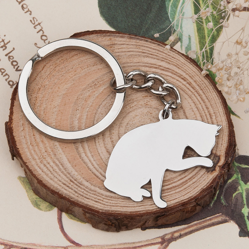 DoreenBeads Fashion Customized 304 Stainless Steel Pet Silhouette Keychain & Keyring Silver Tone Cat DIY 80mm X 37mm,1 PC