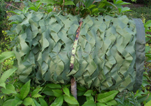 3X3M Green Militay camouflage net Hunting Camo Netting Sun Shade Shelter for Hunting Outdoor decoration