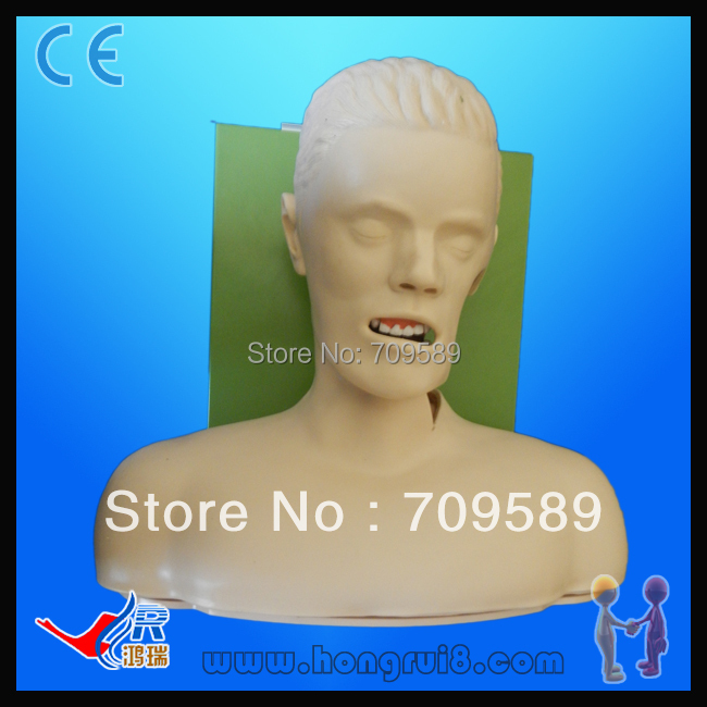 ISO High Quality Electric Endotracheal Intubation Training Mannequin, Intubation Mannequin iso economic newborn baby intubation training model intubation trainer