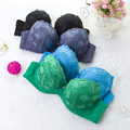 Free shipping  hearing spring Breast young woman bra 323#Soluble flowers