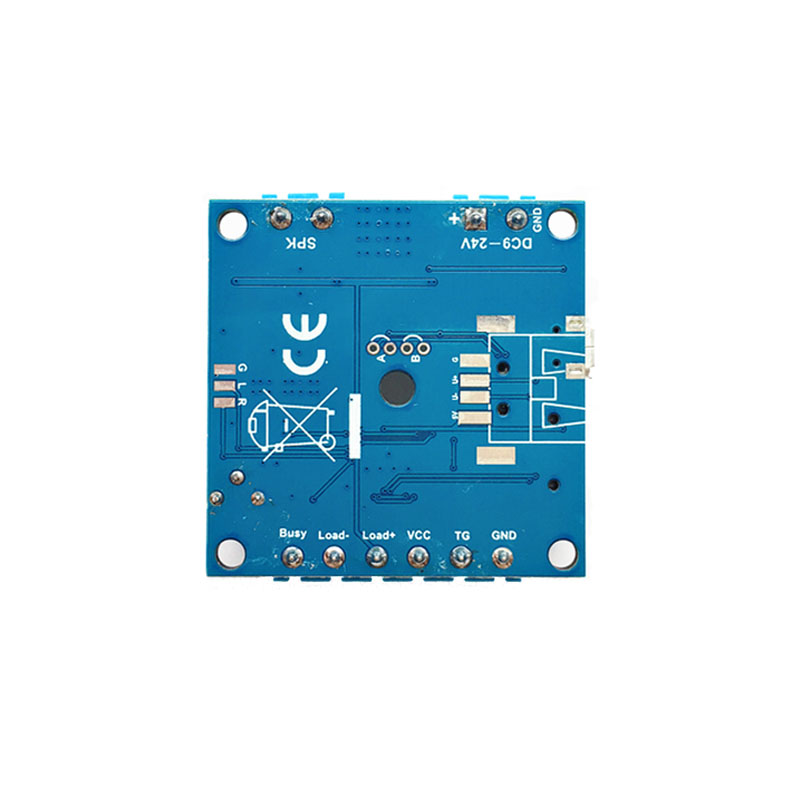 PIR Motion Sensor Activated Audio Player Module MP3 Sound Module with  Simultaneous Load Output to Warning Light or LED Light