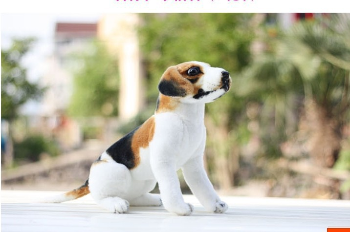 small cut dog toy lovely Squating down beagle dog cute stuff doll about 25cm 557