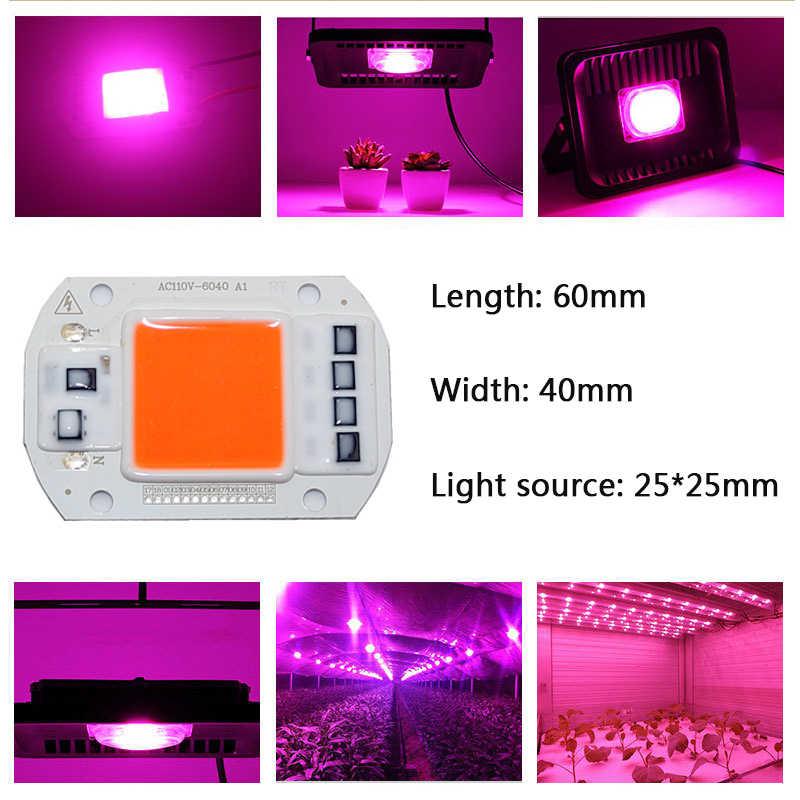 AC220V 110V COB LED Chip Phyto Lampu Spektrum Penuh 50W 30W 20W LED Diode Lampu Pertumbuhan fitolampy untuk Bibit Indoor