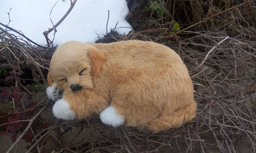 simulation yellow sleeping dog hard model ,polyethylene&furs 23x16cm toy craft,Xmas gift 1109