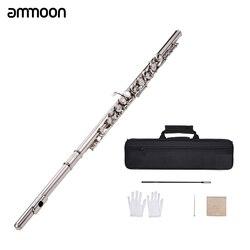 Concerto ocidental 16 Furos C Flauta de Prata Banhado A Chave Cuproníquel Instrumento Musical com Pano de Limpeza Luvas Vara Chave De Fenda