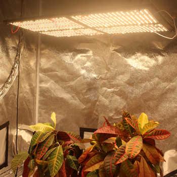 Figolite crecer MeanWell grupo 480w regulable de espectro completo Samsung lm301b 3000 K/3500 K mezcla de rojo 660nm led tabla cuántica de crecimiento ligero
