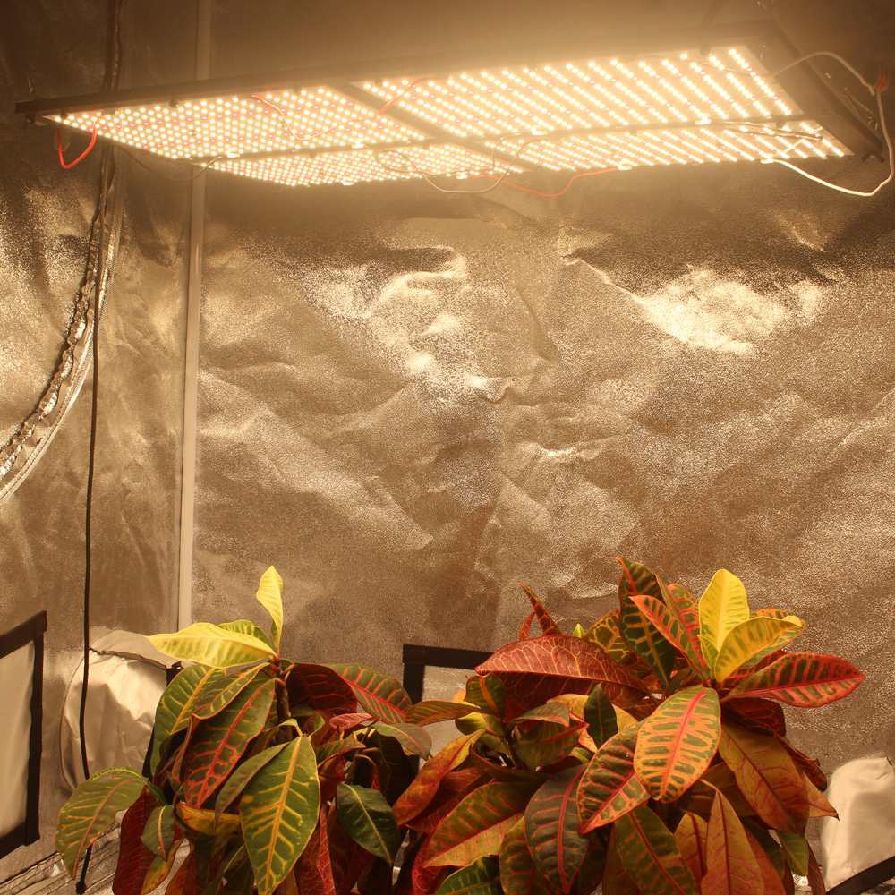 Figolite Grow MeanWell HLG 480w Dimmable Full Spectrum Samsung Lm301b 3000K/3500K  Mix Red 660nm Led Grow Light Quantum Board