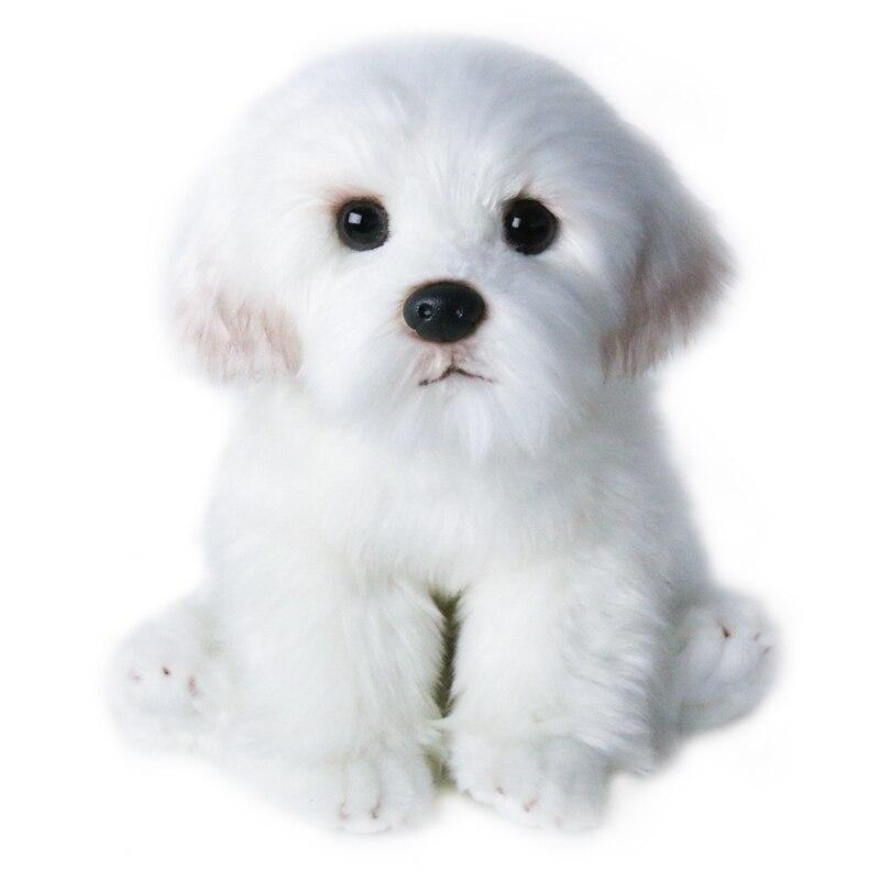 Hond Mannequins Huisdier speelgoed simulatie speelgoed honden show model Photo prop home decoratie A0011Simulation knuffel-in Honden Speelgoed van Huis & Tuin op  Groep 1
