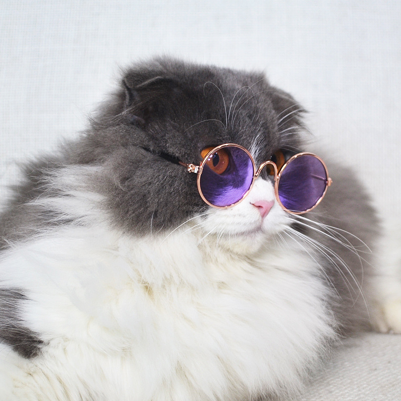 Fashion Sunglasses Cat Pet Accessories Summer Dog Cat Glasses Comb A Variety Of Colors Interesting Pet Supplies