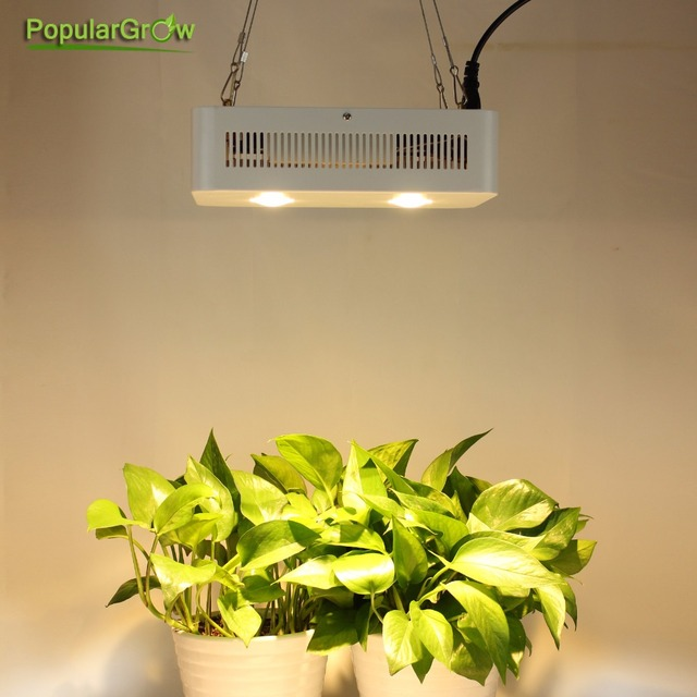 Populargrow cree chip 400w full spectrum cob led grow light for populargrow cree chip 400w full spectrum cob led grow light for hydroponic greenhouse tent commercial medical mozeypictures Gallery