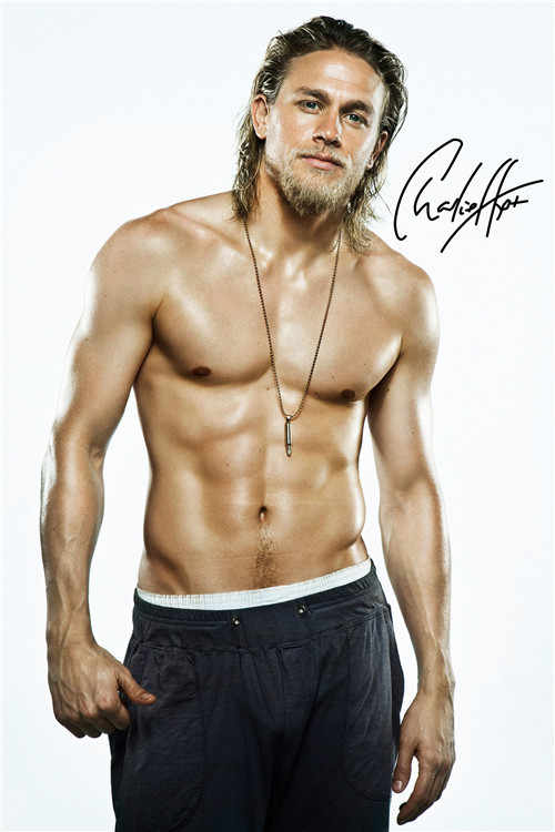 Canvas Poster Silk Fabric PL#204 Custom charlie hunnam Home Decor modern For Bedroom Poster Size  To-720j204