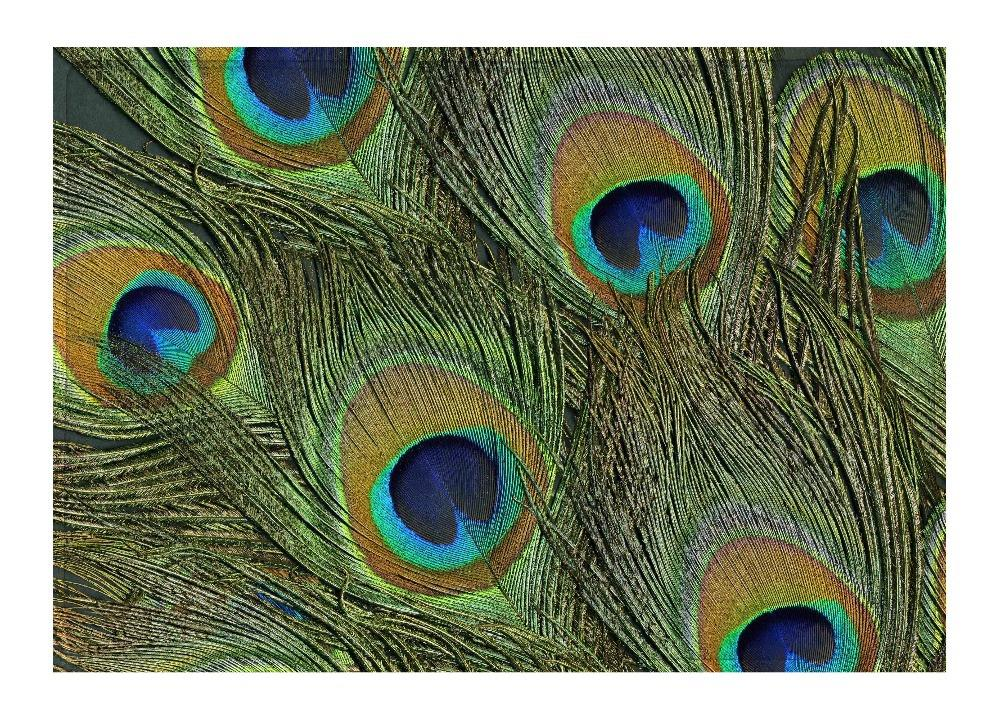 Floor Mat Colorful Green Peacock Gorgeous Feathers Print Non slip Rugs Carpets For font b Indoor