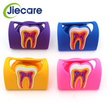 1 PC Hot Sale Cute Dental Name Card Holder Colorful Rubber Teeth Molar Shape Phone Storage For Clinic Dentist Gift New