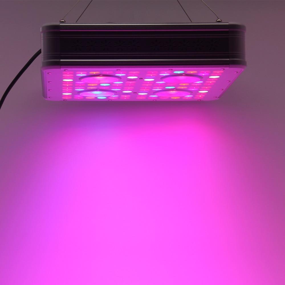 Ideagrow Led Grow Light 300/600/800/1000/1200/1500/1800/2000w Full Spectrum Indoor Greenhouse Grow Tent Plants Grow Led Light