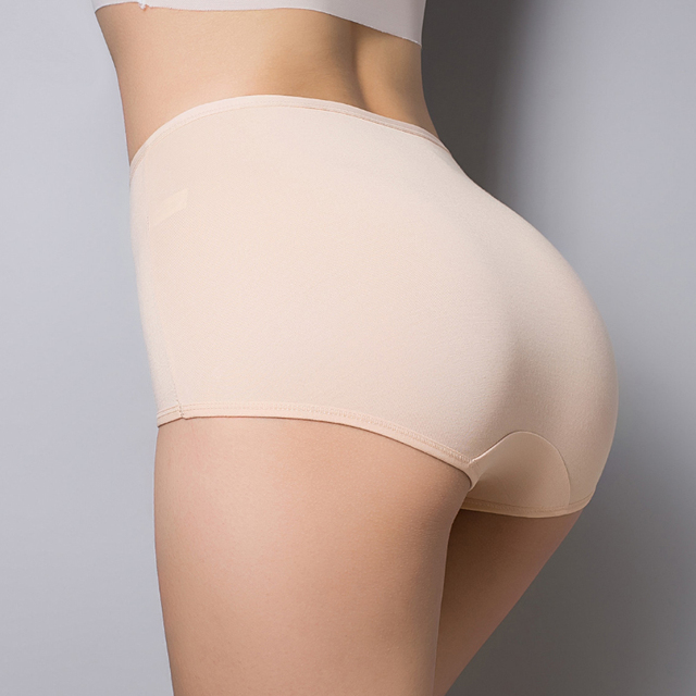 Classic High Waist Ladies Panties