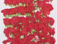 1000pcs Red Pink Dianthus For Christmas Flowers Decorations Dried Raw Material DIY Decoration Free Shipment Wholesales