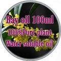 De 100% de água óleos essenciais solúveis laurel óleo 100 ml de óleo baía de banho