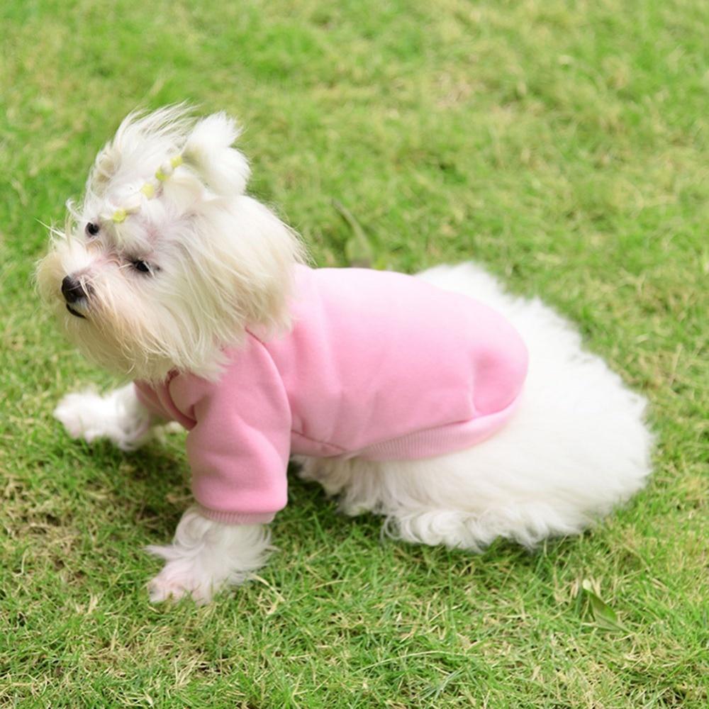 Câine esențial, 2017new cașmir pulover de culoare toamna pură de - Produse pentru animale de companie