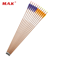 12pcs 89cm Spine 600/700 Carbon Arrows with 4 Inch Turkey Feather and Changeable Head For Archery Hunting/Shooting