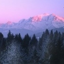 Trees with snow covered mountains at sunset in winter Combloux Mont Blanc Massif Haute-Savoie Rhone-Alpes France 30 x 12