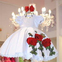 White Ball Gowns Holy First Communion Pageant Flower Girl Dress Kids Evening Gown Dresses For Girls