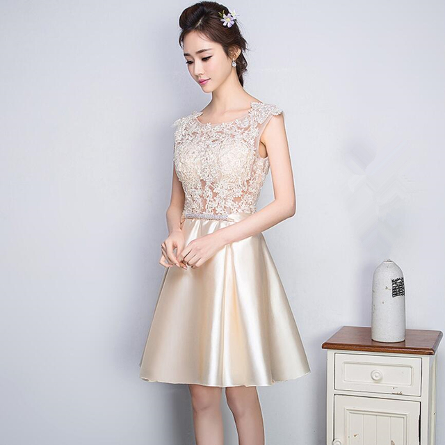 Champagne Back Zipper Tulle Embroidery A-Line Women Formal Gowns Party Dresses Mini Robe de Cocktail Dresses Homecoming Dresses