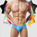 Modal Mesh Breathable Underwear Mens Briefs Antibacterial Men's Low Rise Briefs 6 Color L-XXL TK10