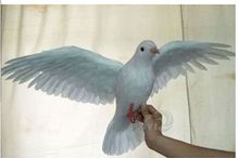 big simulation white dove toy plastic & furs wings bird model gift about 50x42cm