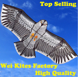 Free shipping with100m handle line outdoor fun sports 1 6m eagle kite high quality flying higher.jpg 250x250