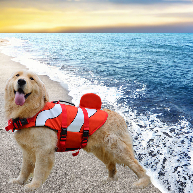 Pacgoth Dogs Swimsuit Life Jacket Raincoat Small Large Dog Cosplay