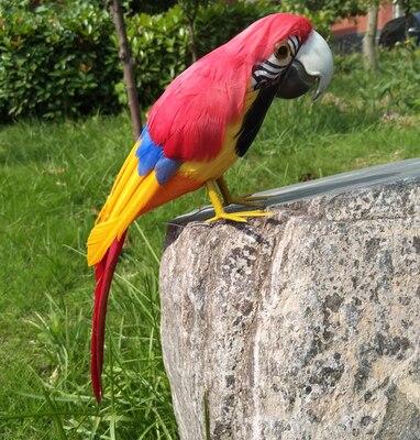 Cerca de 32 cm laranja penas de papagaio vermelho modelo stage prop, jardim de casa decoração presente de aniversário w0952