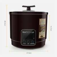 6L Full Automatic Intelligent Fermenting Black Garlic Machine For Household And Commercial With Off Memory Food