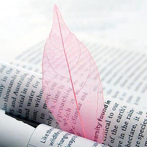 50Pcs Natural Brier Leaves Card Scrapbook - Pink