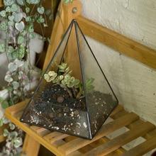 Gardening Modern Tabletop Glass Geometric Terrarium Succulent Plant Pot Pyramid Plants Planter Bonsai Flower Pot Decorative